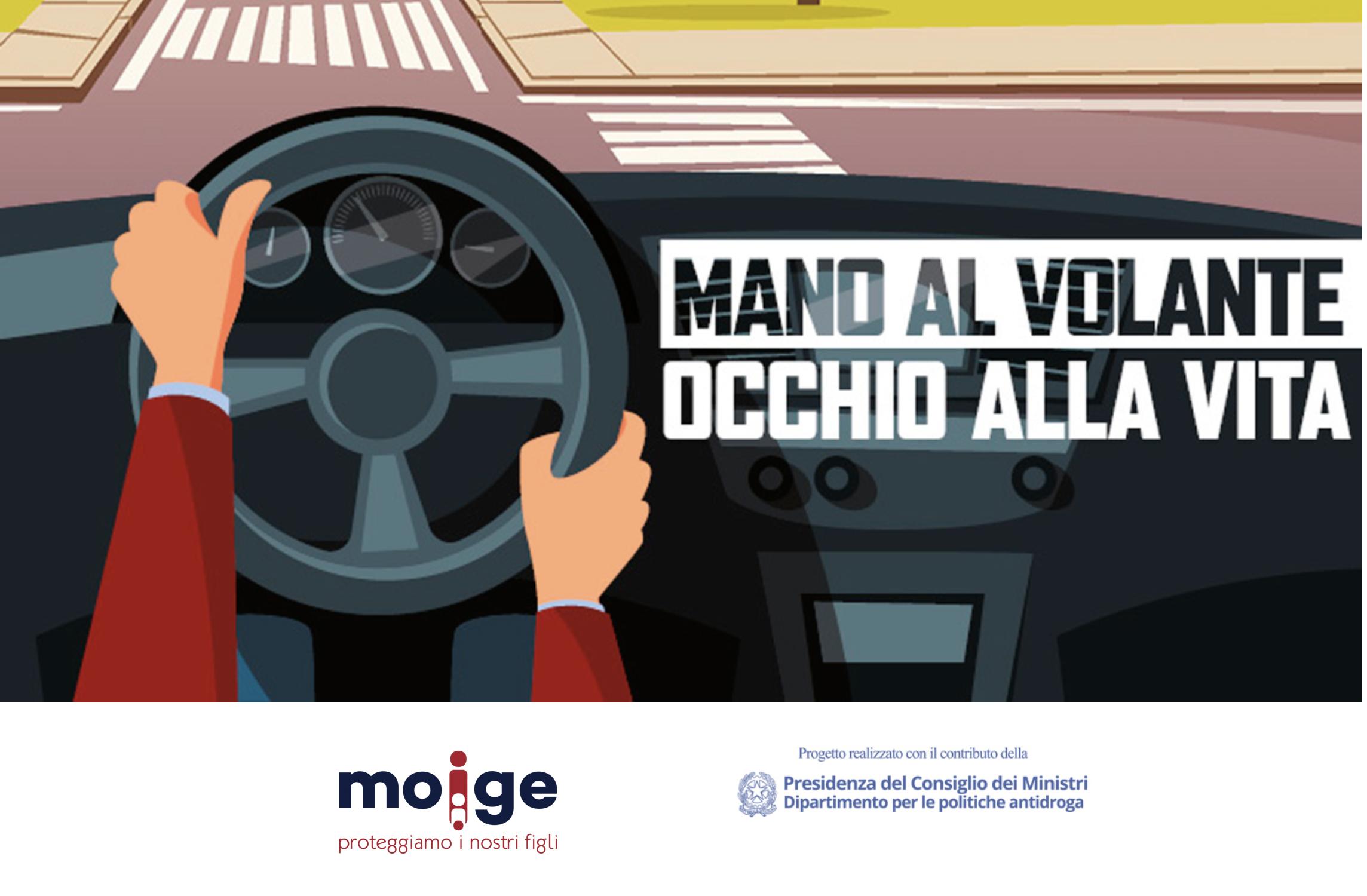 web agency moige